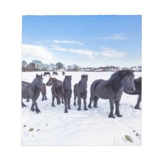 Bloc De Notas Manada de los caballos negros del frisian en nieve