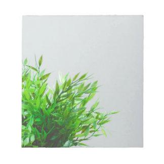 Bloc De Notas Naturaleza de la planta verde de la primavera que