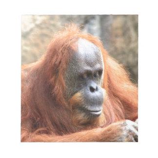 Bloc De Notas Orangután