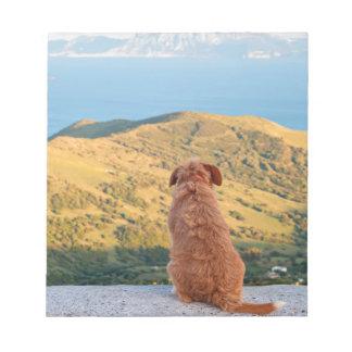 Bloc De Notas Perro solo que mira en el estrecho de Gibraltar