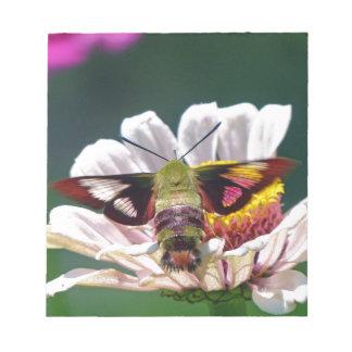 Bloc De Notas Polilla de colibrí