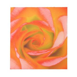 Bloc De Notas Primer color de rosa anaranjado