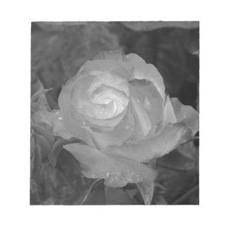 Bloc De Notas Sola flor color de rosa con las gotitas de agua en