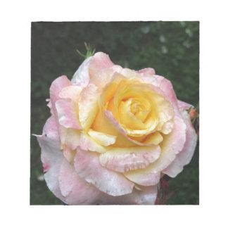 Bloc De Notas Sola flor del rosa amarillo con las gotitas de