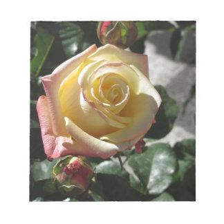 Bloc De Notas Sola flor del rosa amarillo en primavera