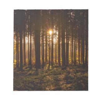 Bloc De Notas Vista de árboles negros y de Sun