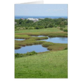 Block Island del prado del camino de Champlin Tarjeta De Felicitación