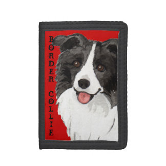 Bloque del color del border collie