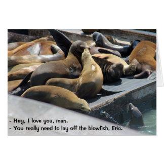 Blowfish de la sabiduría del león marino tarjeta de felicitación