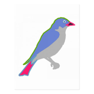 blue-jay-bird
