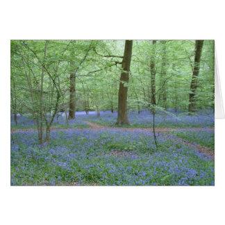 Bluebells en una madera tarjeta