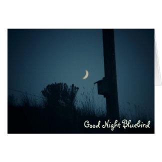 Bluebird de las buenas noches tarjeta de felicitación