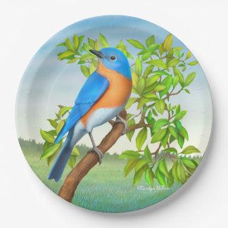 Bluebird del este en las placas de papel del árbol plato de papel