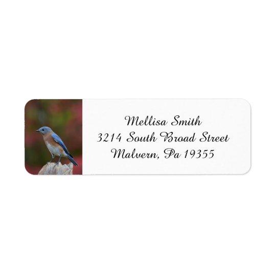 Bluebird del este impresionante etiqueta de remite