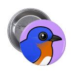 Bluebird del este lindo chapa redonda de 5 cm