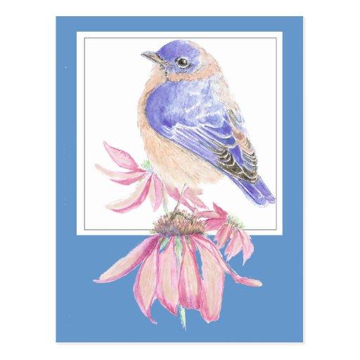Bluebird inspirado del 40:10 de Isaías de la escri Postal