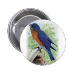 Bluebird Pin
