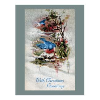 Bluebirds en navidad del vintage del invierno postal