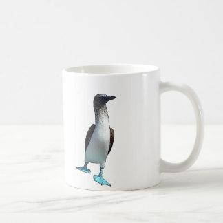 Bobos con base azules taza de café