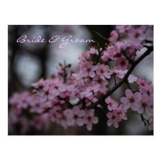 Boda de la flor de cerezo postal