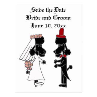 Boda divertido de novia y del novio del caniche postal