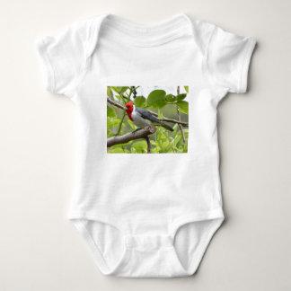 Body Para Bebé Cardenal de cresta roja