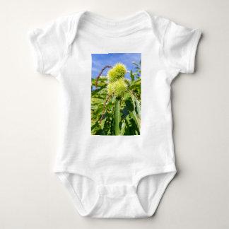 Body Para Bebé Cáscaras del verde y hojas del árbol de castaña