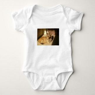 Body Para Bebé Colocación del terrier de mojón