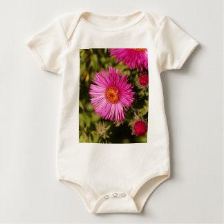 Body Para Bebé Flor de un aster de Nueva Inglaterra