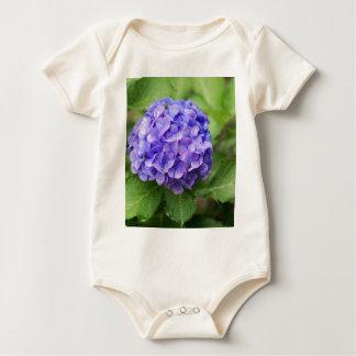 Body Para Bebé Flores de un hydrangea del francés (macrophyl del