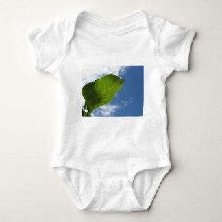 Body Para Bebé La hoja de la nuez se encendió por luz del sol