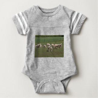Body Para Bebé Manada de ovejas