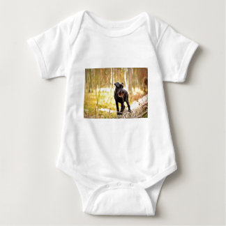 Body Para Bebé miniatura-schnauzer