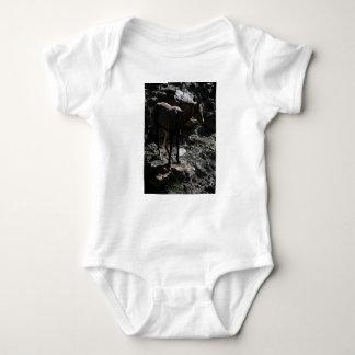 Body Para Bebé Ovejas de Bighorn de la montaña rocosa, oveja