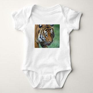 Body Para Bebé Primer del tigre del Malay de los alquileres