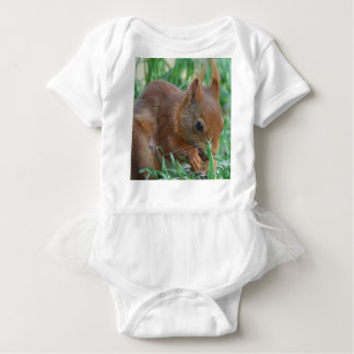 Body Para Bebé Squirrel - Jean Louis Glineur Photography
