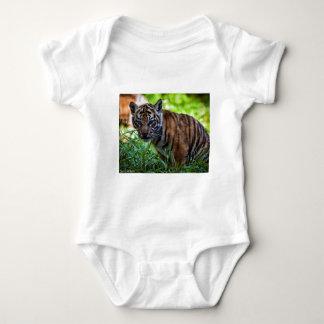 Body Para Bebé Tigre Cub de Sumatran de los alquileres