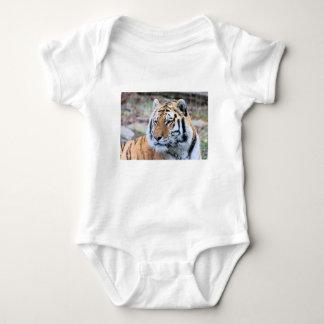 Body Para Bebé Tigre de Bengala real estoico de los alquileres