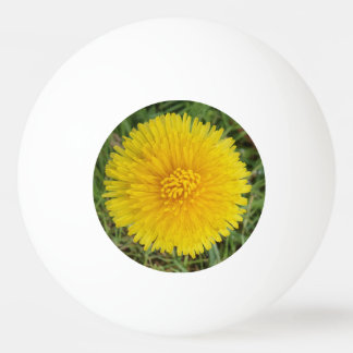 Bola de ping-pong amarilla de la estrella de la