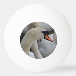 Bola de ping-pong blanca de la estrella del cisne