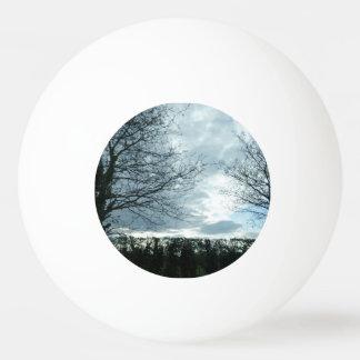 Bola de ping-pong de la estrella de la naturaleza