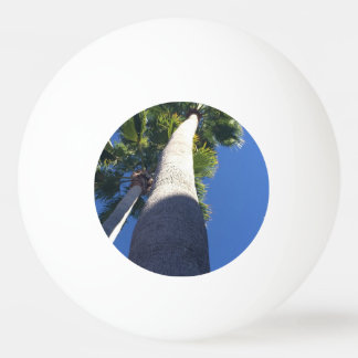 Bola de ping-pong de la palmera