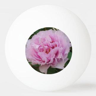 Bola de ping-pong rosada de la estrella de la