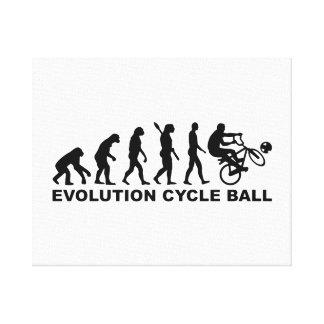 Bola del ciclo de la evolución impresion en lona