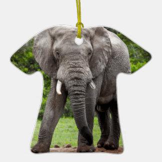 Boletín solitario del elefante africano ornamentos de reyes magos