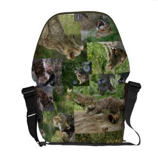 Bolsa De Mensajería La bolsa de mensajero escocesa de los gatos