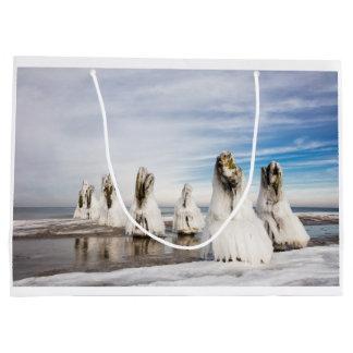 Bolsa De Regalo Grande Groynes en la costa de mar Báltico