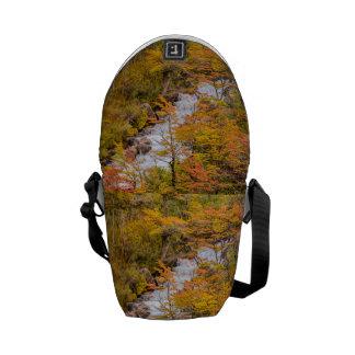 Bolsas De Mensajería Escena coloreada del paisaje del bosque, Patagonia