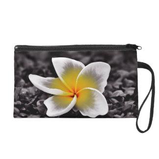 Bolsito De Fiesta Flor de Hawaii del Frangipani del Plumeria