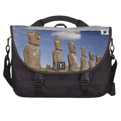 Bolso del ordenador portátil del viajero del carri bolsas para ordenador
